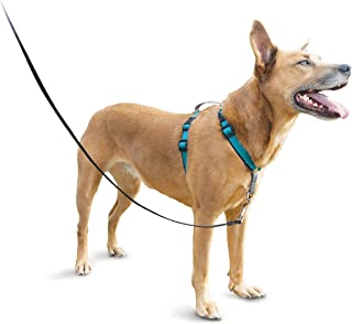 PetSafe 3in1 Harness, from the Makers of the Easy Walk Harness, Fully Adjustable No-Pull Dog Harness