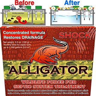 Septic Tank Treatments, Safe Enzyme and Advanced Bacteria for Best Septic Tank Treatment, Flush Toilet Closet with bio Active Organic Powder Monthly for Aerobic Odor and Sludge drainfield Control