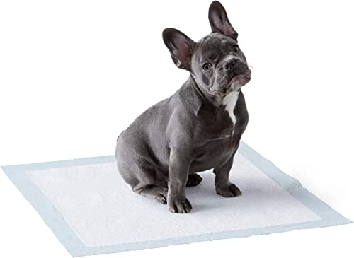 Amazon Basics Dog and Puppy Pads, Leak-proof 5-Layer Pee Pads with Quick-dry Surface for Potty Training