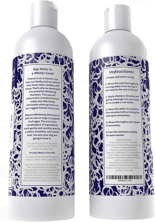 Petpost   Shampoo Blanqueador para Perros – El Mejor Tratamiento de Aclaramiento para Perros con Pelaje Blanco – Calmante Fragancia de Sandía – Para ...