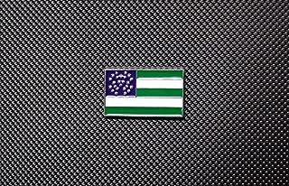 nypd flag pin