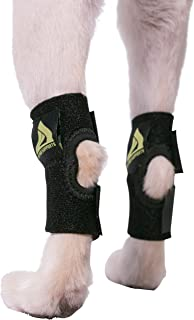 Pair of Dog Canine Rear Leg Hock Joint Wraps Protects Wounds as They Heal Compression Brace Heals and Prevents Injuries and Sprains Helps with Loss of Stability Caused by Arthritis by My Pro Supports