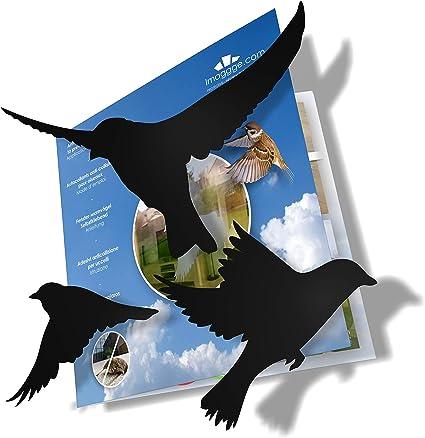 Colore: Nero Adesivi anti-collisione per prevenire gli attacchi degli uccelli sul vetro della finestra imaggge.com Set di 20 sagome 20X