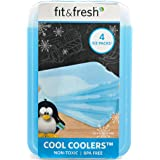 Fit & Fresh XL Cool Coolers Reusable Ice Packs