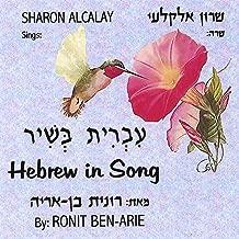 Best hebrew songs mp3 Reviews