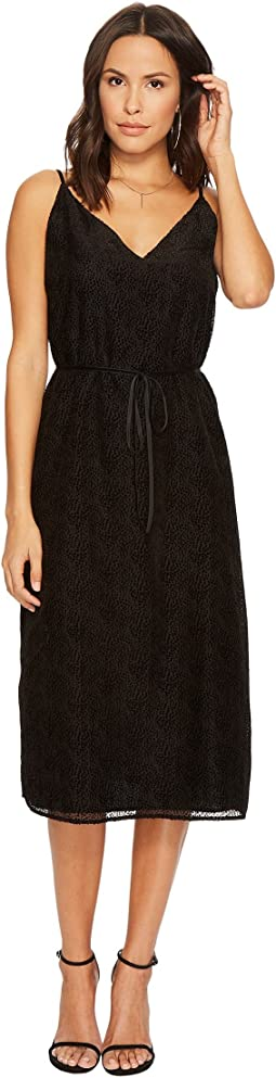 BB Dakota - Alayna Burnout Velvet Midi Dress
