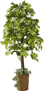 人工観葉植物 ベンジャミン