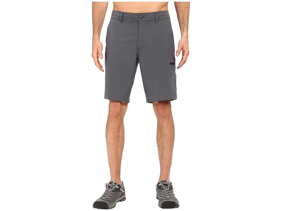 The North Face Pura Vida 2.0 Shorts (Spruce Green (Prior Season)) Men