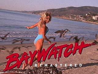 Baywatch, Season 8