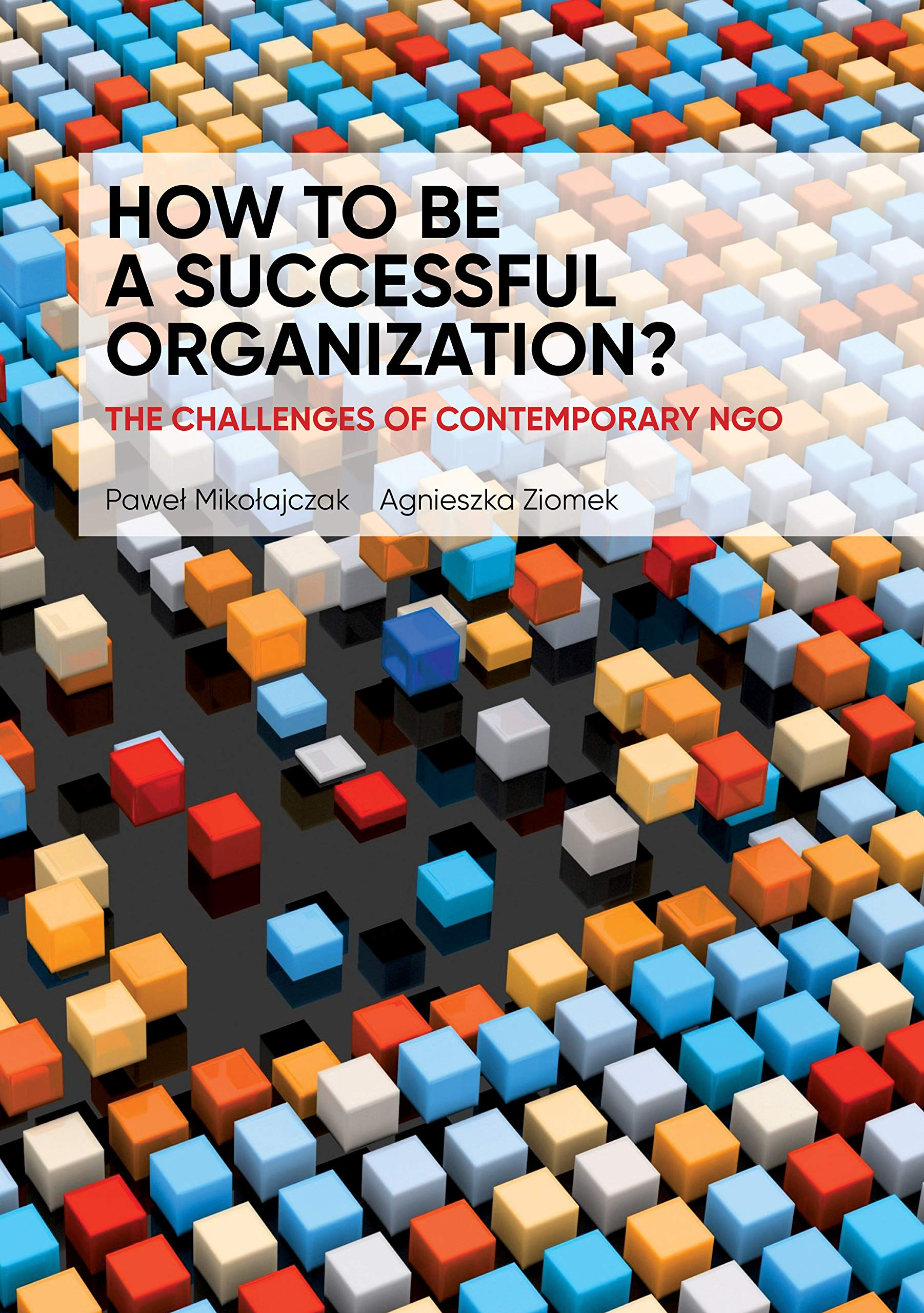 How to Be a Successful Organization?: The challenges of contemporary NGO