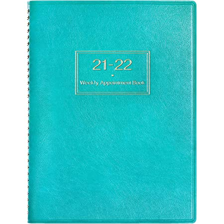 Appointment Diary 2021 with Times, 2021 Diary A4 Week to View Hourly Planner in 15 Minutes, 21.8 x 29 cm, Softcover Appointment Book with Ringbound - Blue