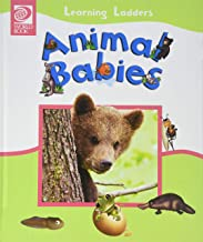 Animal Babies (Learning Ladders 2/Hardcover)