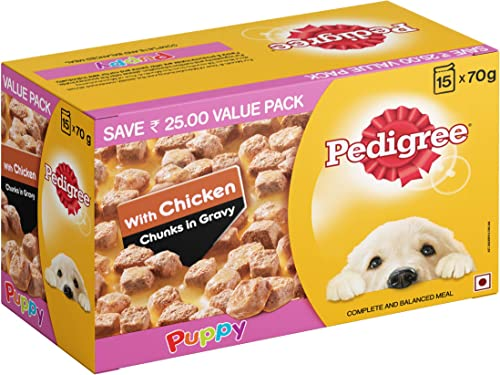 Pedigree Puppy Wet Dog Food, Chicken Chunks in Gravy, 70 g (Pack of 15)