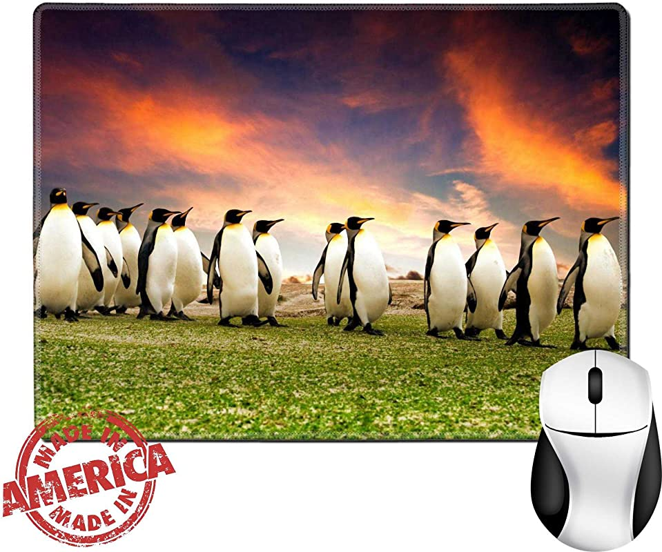 Luxlady Natural Rubber Mouse Pad Mat With Stitched Edges 9 8 X 7 9 King Penguins In The Falkland Islands IMAGE ID 6525516