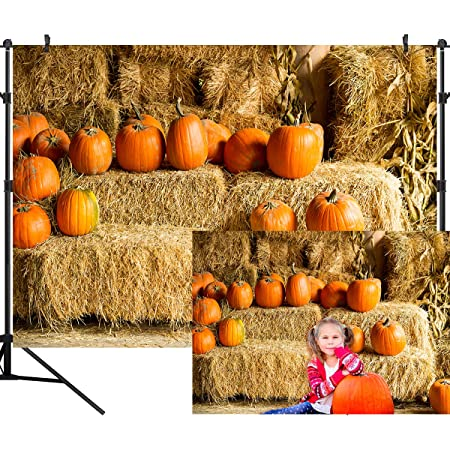 Laeacco 7x5ft Thanksgiving Day Background Harvest Pumpkins Yellow Flowers Fallen Leaves Rustic Brick Wall Green Wall Vinyl Photography Backdrops Smooth Floor Children Kids Adults Portraits Shooting