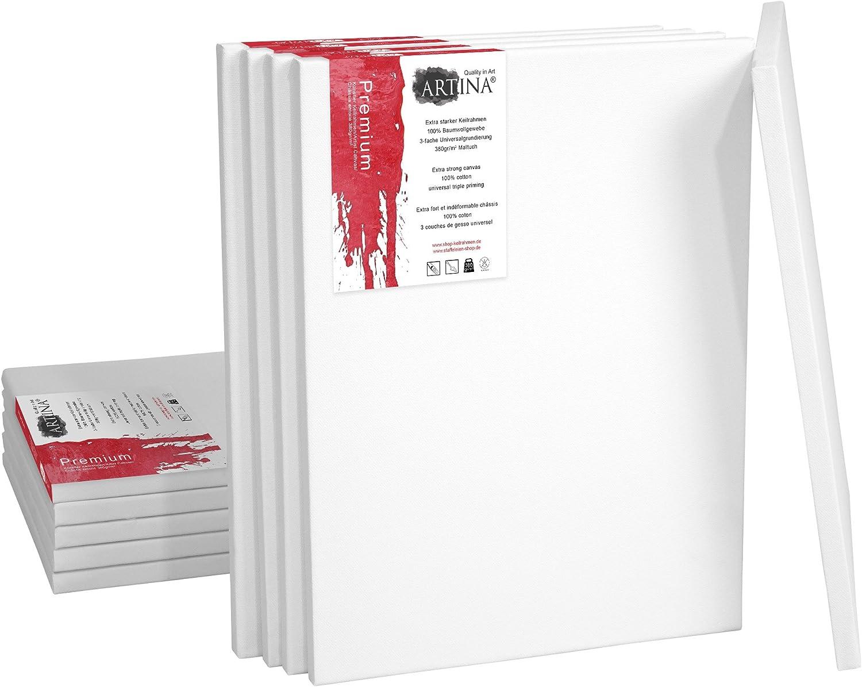 comprar mejor Artina Set de 10 10 10 lienzos blancoos Premium de 100% algodón con bastidores robustos 380 g m2 - 70x120 cm  comprar descuentos