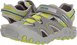 Geox Kids Kyle 12 (Little Kid/Big Kid)