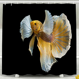 Pamime Waterproof Eco-Friendly Polyester Shower Curtain Hooks Siamese Fighting Fish Biting Thai Popular Aquarium Big Ears Dumbo Golden Yellow Glossy Shower Curtains 72X72Inches Bathroom