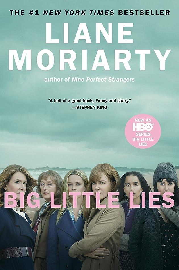 潜むセグメント調停者Big Little Lies (English Edition)