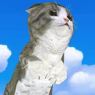 Reckless Cat - Jump!Jump!Jump!