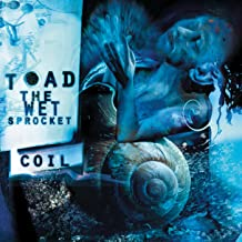 Best toad the wet sprocket coil songs Reviews