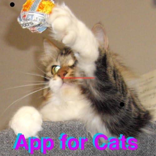 猫用アプリ おもちゃの紐