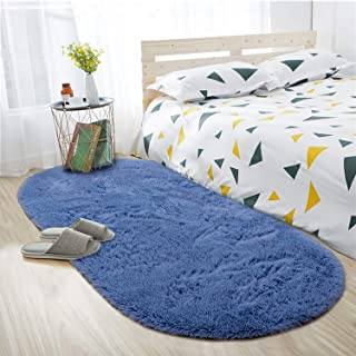 ISEAU Oval Fluffy Rug Carpets, Modern Plush Shaggy Area...