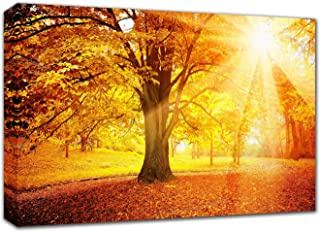 Best fall home pictures Reviews