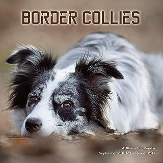 Border Collie Calendar - 2017 Wall Calendars - Calendar 2016 - Dog Breed Calendars - Monthly Wall Calendar by Magnum