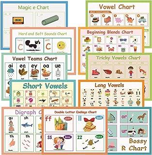 11Pcs/Set English Phonics Language Arts Skills Charts for Kids l Bulletin Board Set and Classroom Decorations Organization...