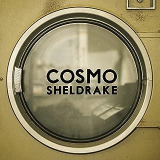 cosmo sheldrake the moss