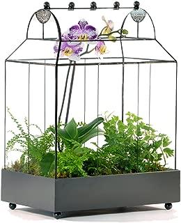 H Potter Glass Terrarium Succulent Planter Wardian Case Container for Plants