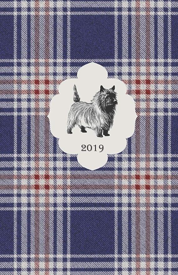 敬意を表して防水肥料2019: Cairn Terrier - Monthly and Weekly Planner 2019 (also Dec 2018) with yearly overviews, monthly calendars and weekly 2-page horizontal layout, notes, lists (Monday start week)