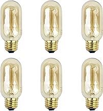 Newhouse Lighting T45 Incandescent Thomas Edison Filament Light Bulb, 6-Pack