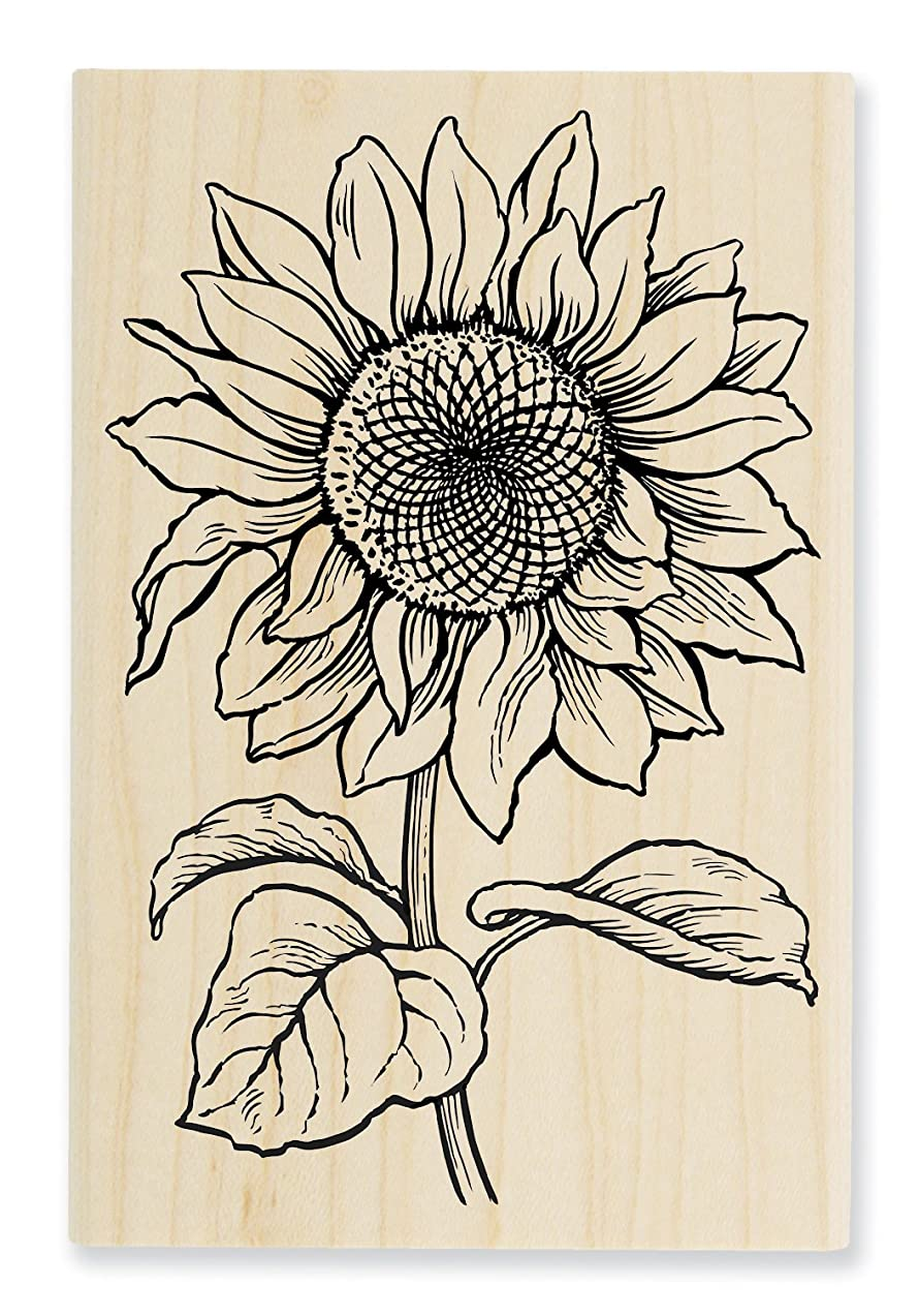 STAMPENDOUS Wood Handle Stamp, Sweet Sunflower ?