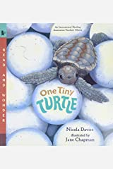 One Tiny Turtle: Read and Wonder Paperback