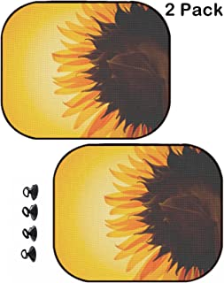 MSD Car Sun Shade Protector Side Window Block Damaging UV Rays Sunlight Heat for All Vehicles 2 Pack Image ID 19277058 Abstract IT Background Transparent Earth Globe Bright Blue Characters