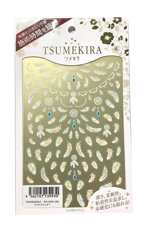 石油銃冊子ツメキラ(TSUMEKIRA) ネイル用シール パステルフェザー NN-HNE-301