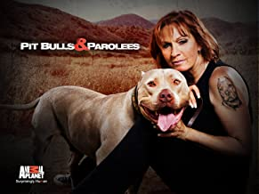Best pitbulls and parolees season 3 episode 12 Reviews