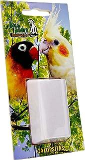 Bica Pedra Peq.paraPassaros Calopsitas Tudo Pet Para Pássaros