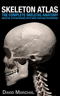 Skeleton Atlas: The complete Skeletal Anatomy: Skeletal System images with Bone Fracture references