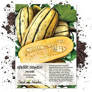 Seed Needs, Delicata Winter Squash (Cucurbita Pepo) 45 Seeds Non-GMO