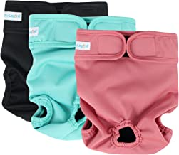 Best belly bands for female dogs Reviews