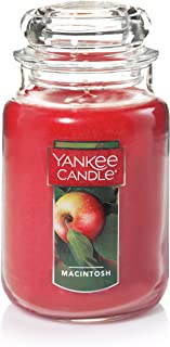 Yankee Candle Large Jar Candle, Macintosh