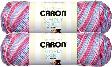 Caron Simply Soft Bulk Buy Stripes 100% Acrylic Yarn (2-Pack) ~ 5 oz. Skeins (Times Square)