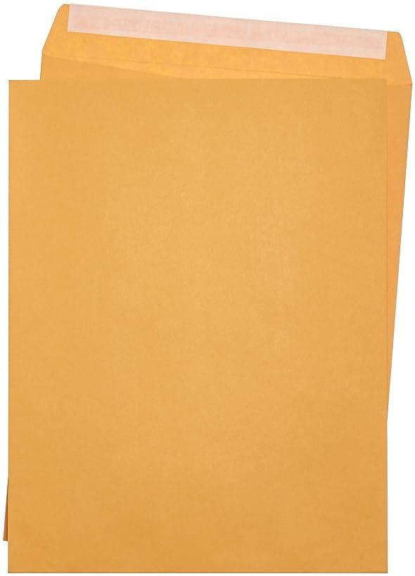 AmazonBasics Catalog Mailing Envelopes, Peel & Seal, 10x13 Inch, Brown Kraft, 250-Pack