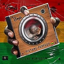 picture perfect mp3