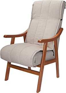 Amazon.es: sillon