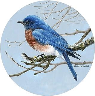 Thirstystone Drink Coaster Set, Bluebird