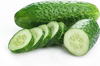 Iznik Cucumber Seed
